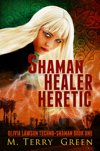 Shaman Healer Heretic (Book 1)
