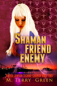 Shaman Friend Enemy (Book 2)