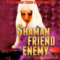 Shaman Friend Enemy Audiobook